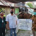 Hari Raya Idul Adha, PT Jamkrindo Serahkan Hewan Kurban di Denpasar