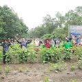 Peringatan HTN 2020, Apresiasi untuk Petani Indonesia
