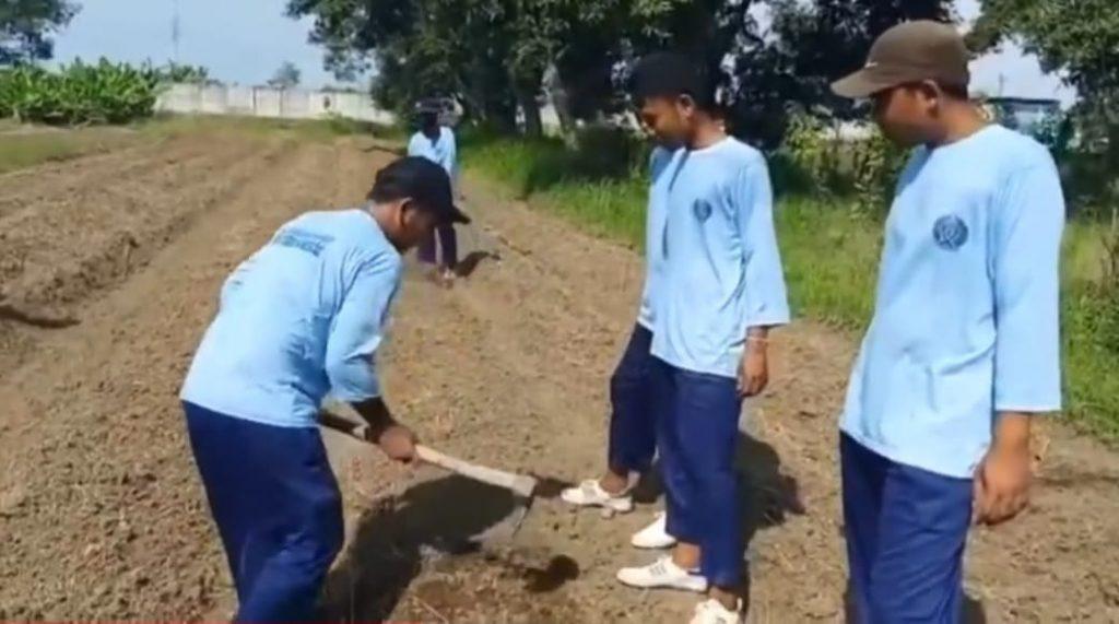 Tahanan Lapas Tanam di Kebun Lapas Kendal