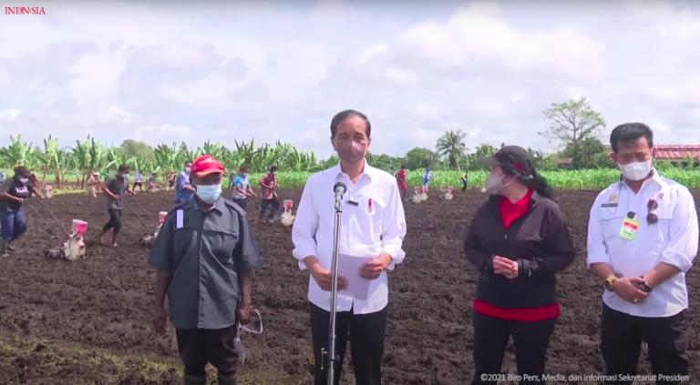 Presiden RI Joko Widodo - Kementan RI melakukan kegiatan Tanam Jagung bersama Petani sekaligus meninjau program Petani Milenial, Senin di Sorong (4/10/2021).